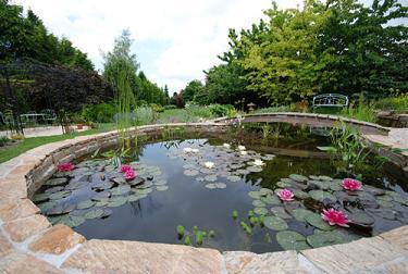Ontwerp van een vijver vijvers voor elke tuin for Tuin uittekenen
